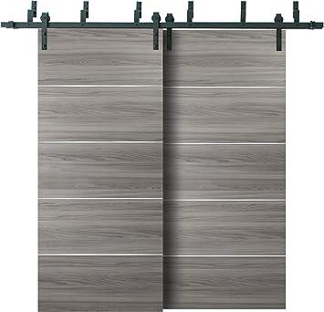 Puertas correderas de granero de doble bypass con rieles de 13 pies | Planum 0020 ceniza de jengibre | Heavy Top Mount 2 pistas Slider Set | clóset moderno Solid Core puertas: Amazon.es: Bricolaje y herramientas