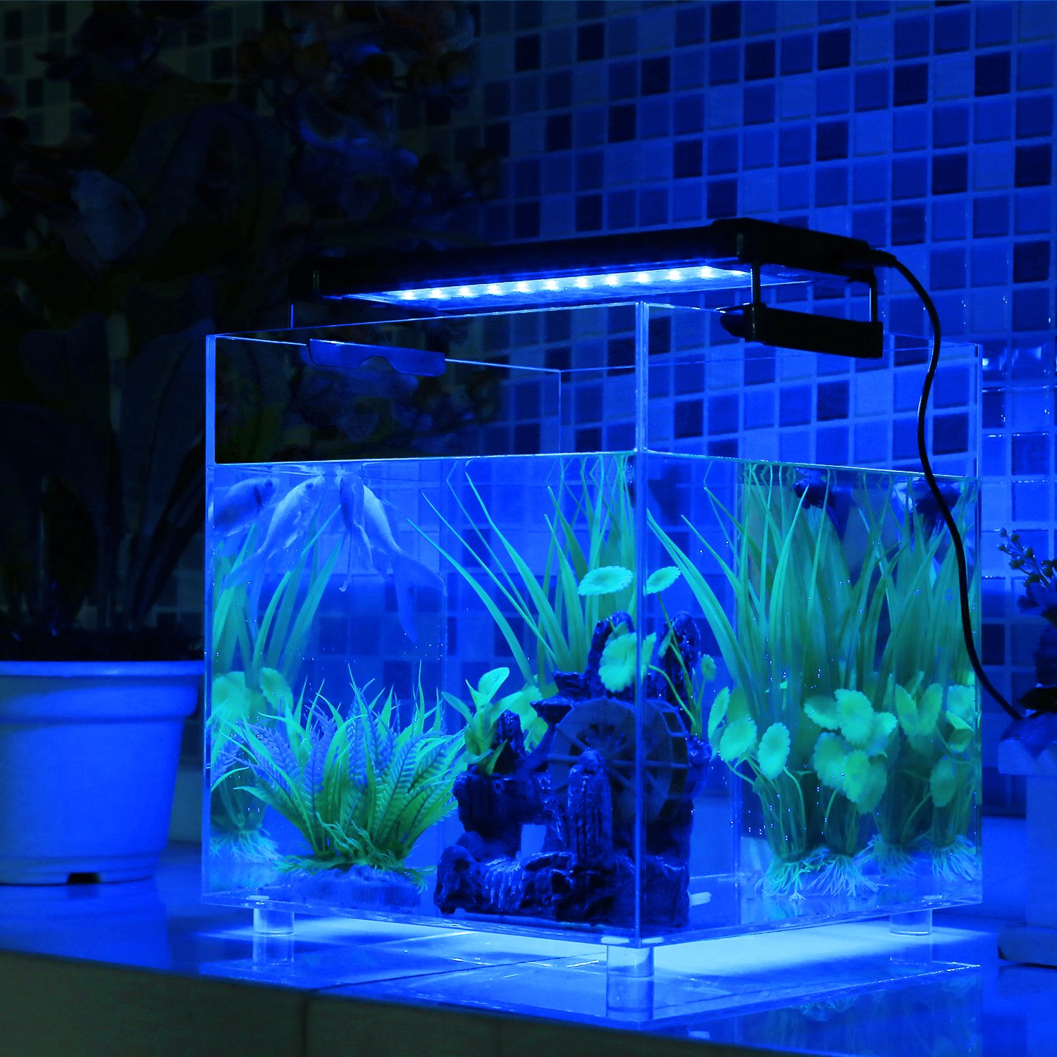 DECKEY Lámpara de Acuario Luces para Acuarios y estanques Se aplica a 30-50 cm 6W 24 LED Blanco y 12 LED Azul con Enchufe EU: Amazon.es: Productos para ...
