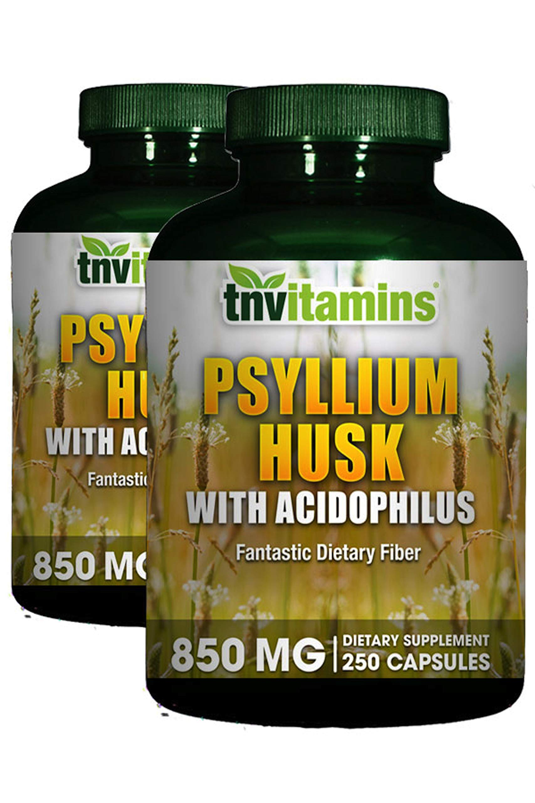 Psyllium Husk Fiber 850 Mg with Acidophilus by TNVitamins (2 x 250 Capsules) by TNVitamins
