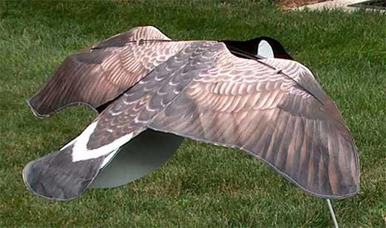 Sillosocks Flapping Canada Snow Goose Decoy, Grey Paceline Products Inc. SS1289