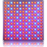 Lightimetunnel Newest 45W LED Grow Light Panel Red Blue Plant Light for Seedling Growing and Flowering