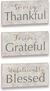 Imagine Designs Thankful Grateful Blessed Word Trio Set Plaque, Aqua