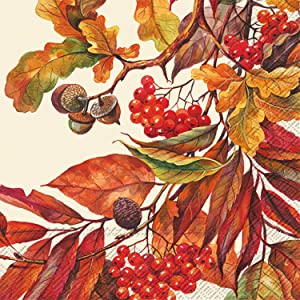 Ideal Home Range 3-Ply Paper Beverage/Cocktail Napkins, 20-Count, 5 x 5-Inches Folded, Fall Colors Cream