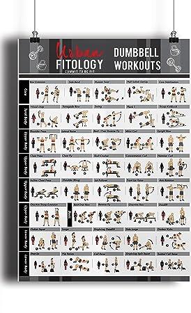 Póster de gimnasia Urban Fitology para hombres y mujeres – 40 ...