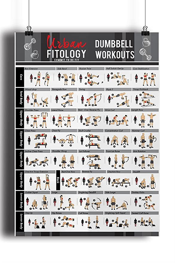 Urban Fitology Póster de Gimnasia Hombres y Mujeres - 40 ...