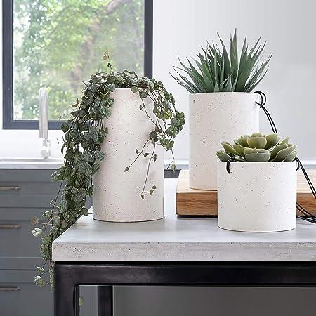 Amazon.com: Maceta colgante para plantas de interior – Juego ...