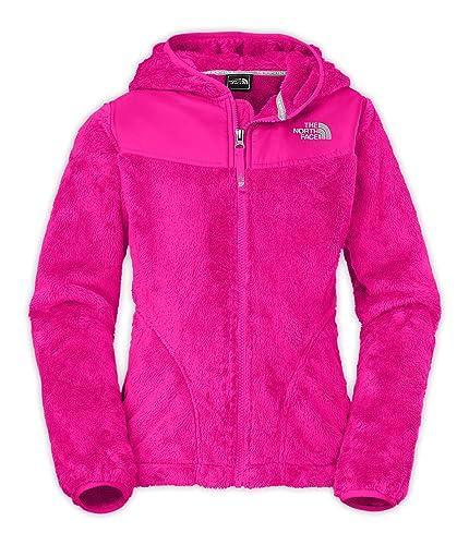 0a4ab6ba4d88 ... sweden amazon the north face oso hooded fleece jacket girls metallic  silver razzle pink xl sports