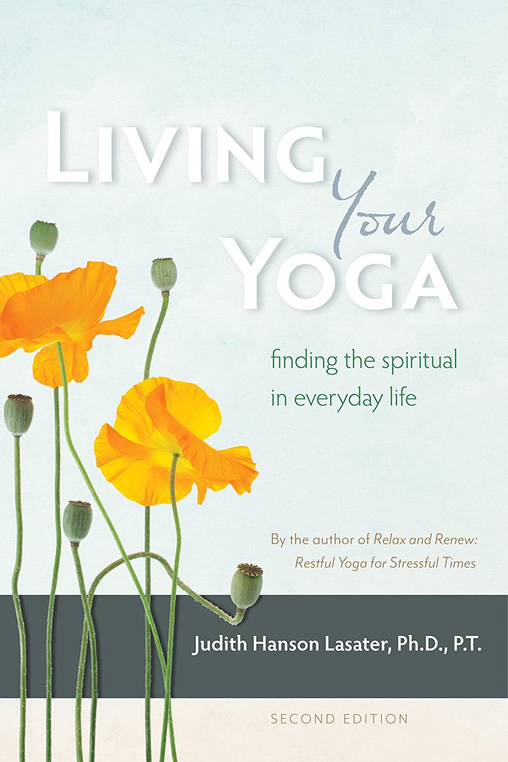 Living Your Yoga: Finding the Spiritual in Everyday Life ...