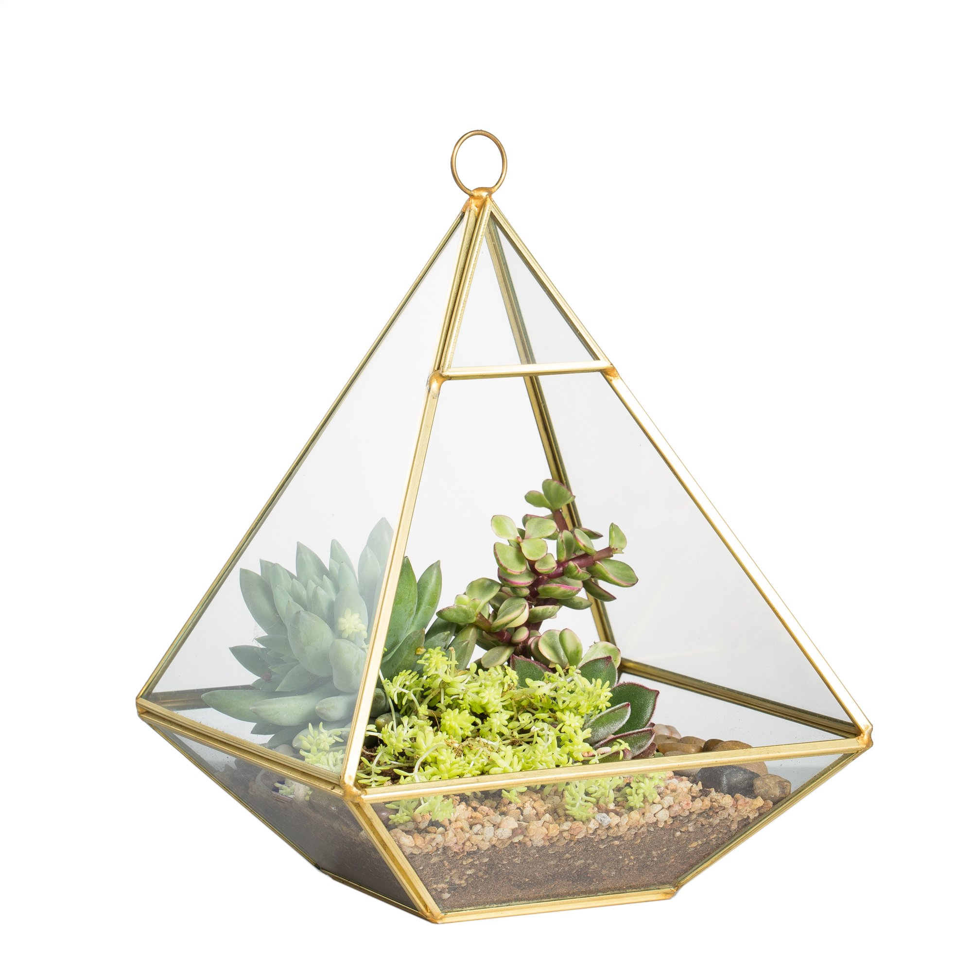 NCYP Copper Pyramid Vertical Metal Glass Geometric Wall Hanging Terrarium Brass Tabletop Succulent Air Plants Holder Planter Fern Moss Box Display Vase Pot 5.9 x 5.9 x 7.87 inches Gold by NCYP
