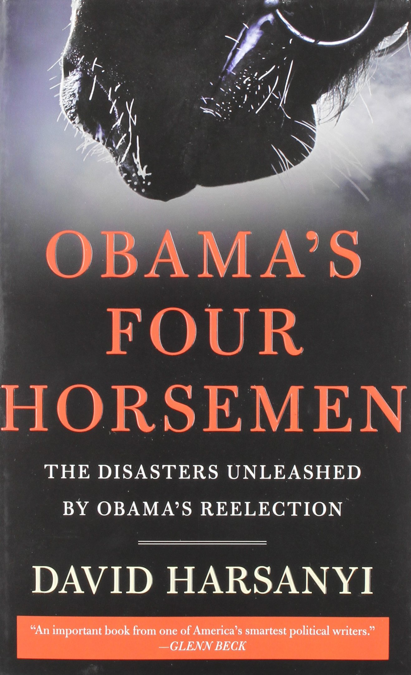 Download Obama's Four Horsemen: The Disasters Unleashed by Obama's Reelection ebook