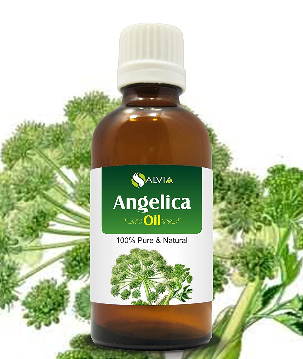 【誠実】 ANGELICA 100ML OIL OIL 100% NATURAL PURE UNDILUTED B017O29PNE UNCUT ESSENTIAL OIL 100ML B017O29PNE, 家具インテリア大川家具通販:ad6dfbc6 --- arianechie.dominiotemporario.com