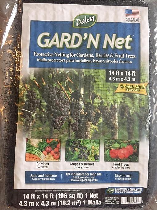 Dalen Gard n Red: Amazon.es: Jardín