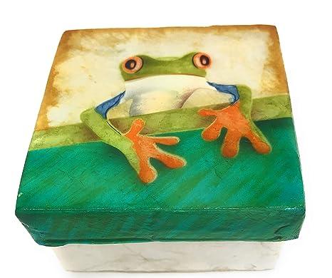 Amazon.com: Caja de recuerdo de árbol Rana Capiz 3 x 3: Home ...