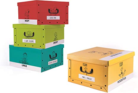 Excelsa 62451 Juego Cajas de almacenaje (cartón, Multicolor, 4 Unidad: Amazon.es: Hogar