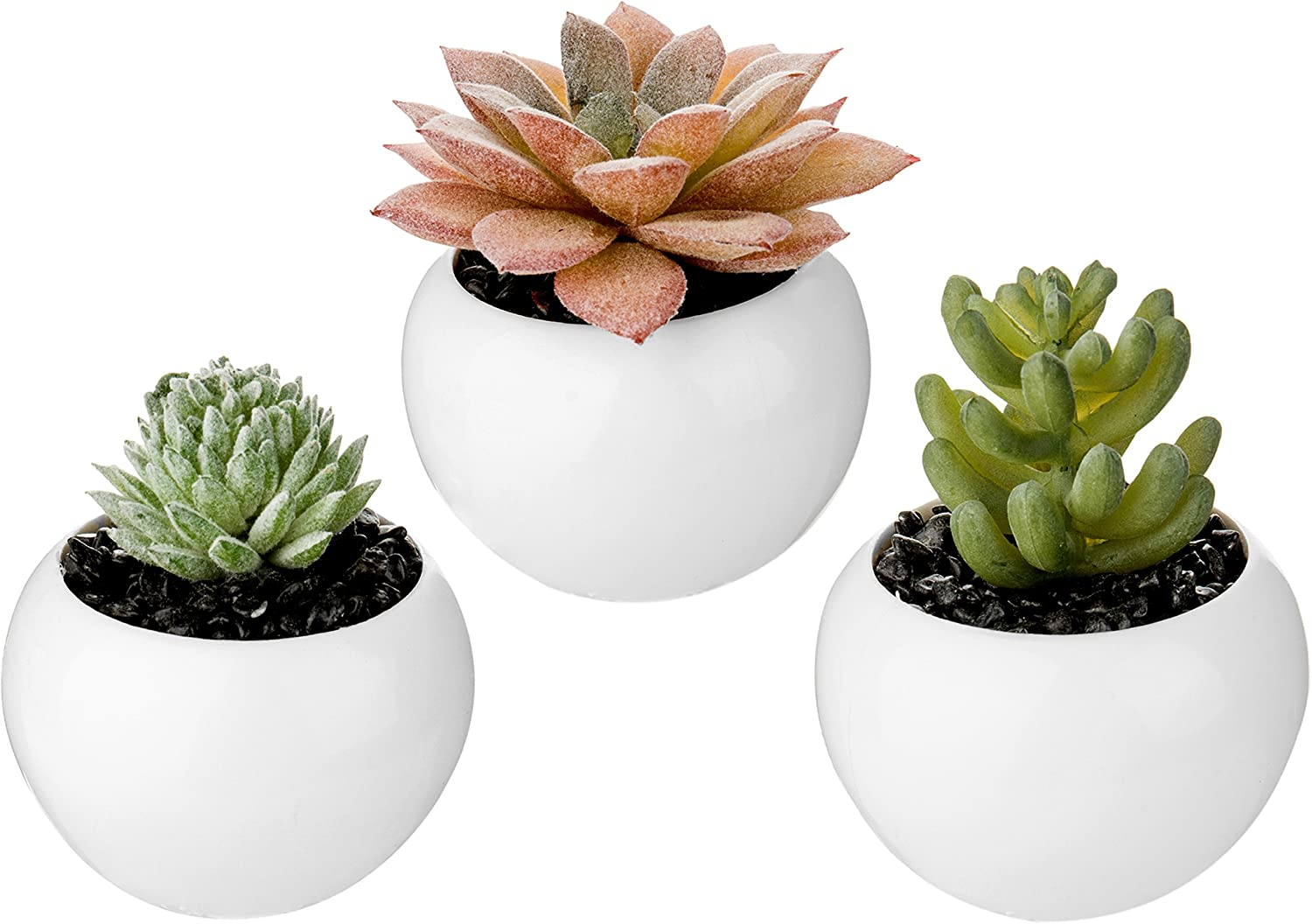 Mygift Set Of 3 Mini Artificial Succulent Plants In White Ceramic Pots Assortment 1 Home Kitchen
