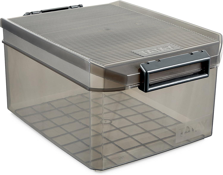 TATAY 1150114 - Caja de Almacenamiento Multiusos con Tapa, 14 l de Capacidad, Plástico Polipropileno Libre de BPA, Marrón Translúcido, 27 x 39 x 19 cm