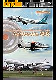 Aerozoom 2018: Itinerario tra gli aeromobili operanti in italia