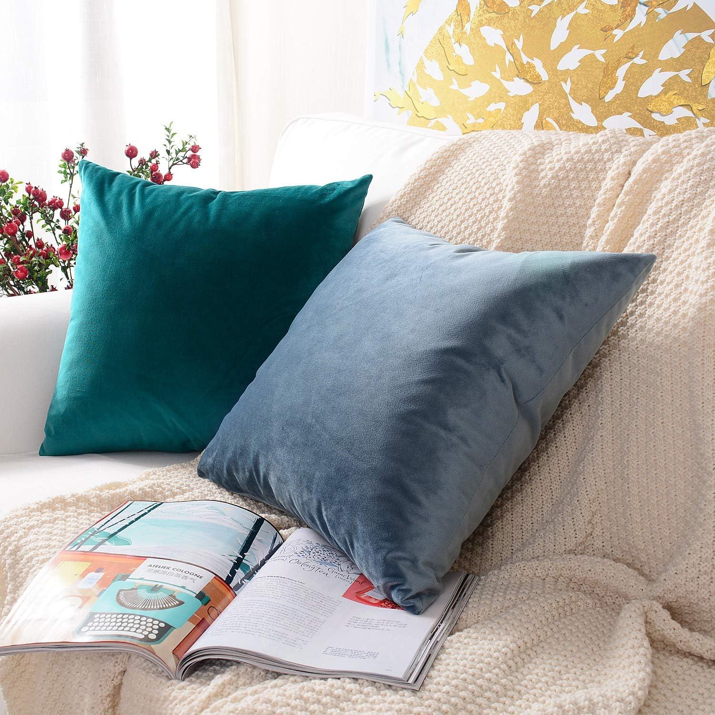 MERNETTE Velours Douce D/écoratif /Épais Housses de Coussin Taie doreiller pour Canap/é Lit Salon Chambre Voiture Chaise 30x50 cm