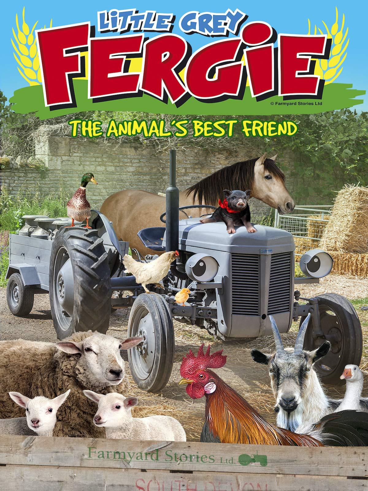 Little Grey Fergie: The Animal's Best Friend