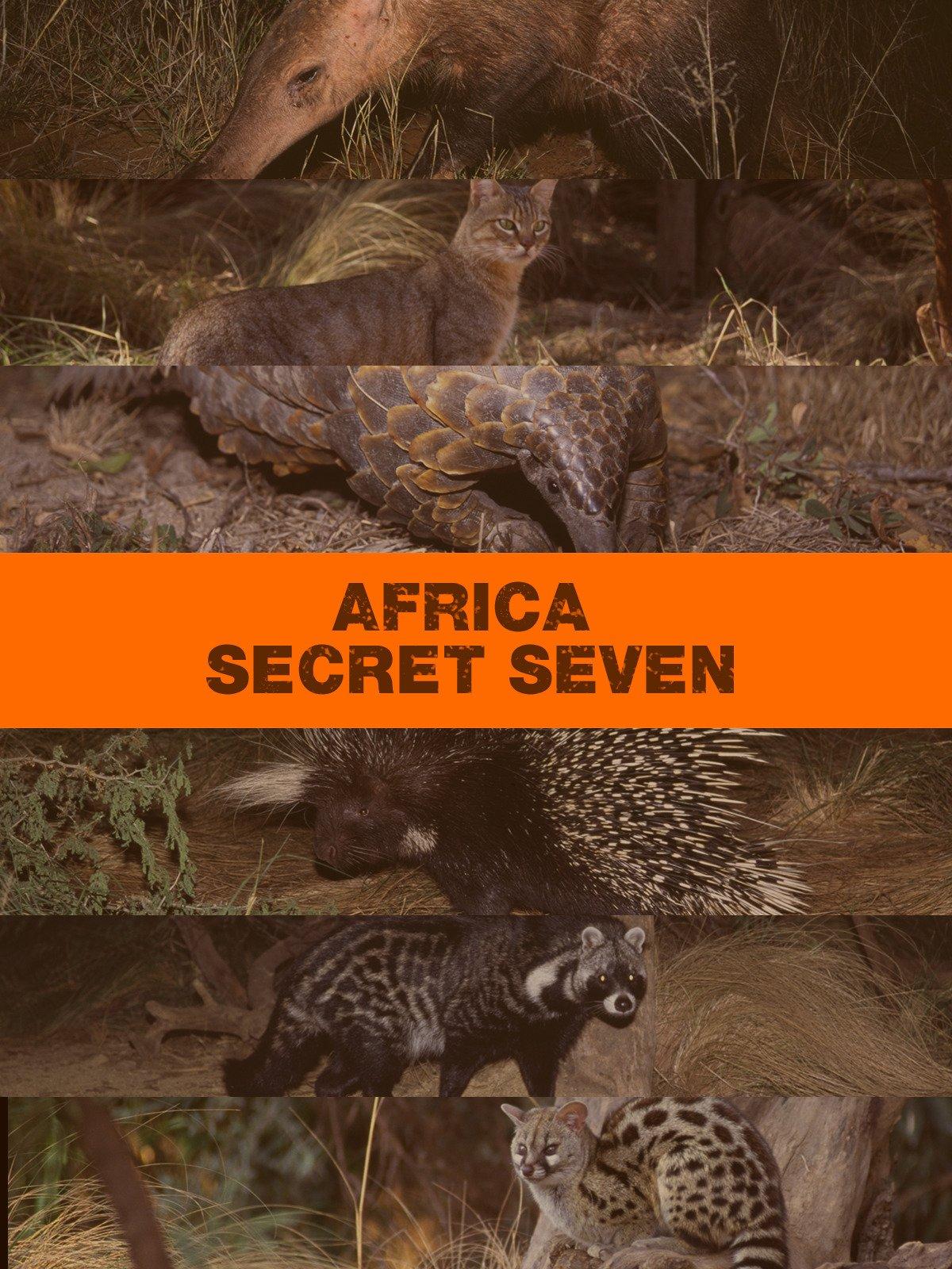 Africa's Secret Seven on Amazon Prime Video UK