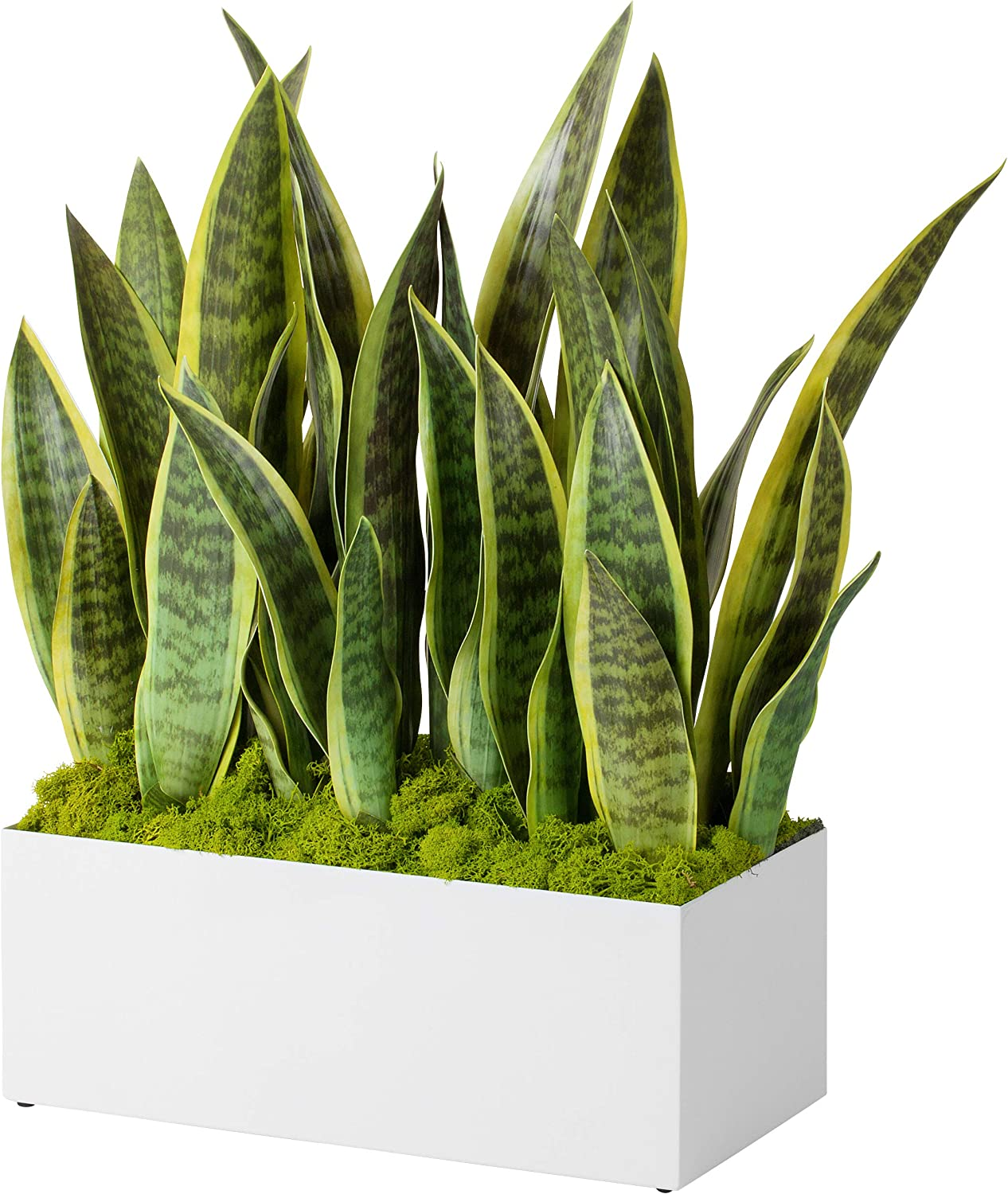 "Modern Rectangle Planter Box - 16"" Metal Trough Planter Ideal as a Herb Planter 