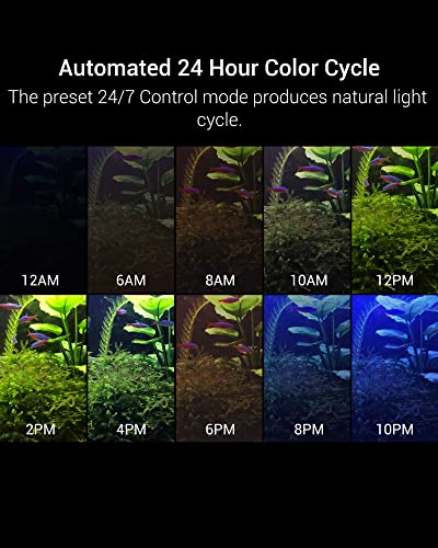 Nicrew 24/7 lighting schedule