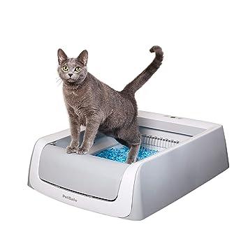 Amazon.com: PetSafe - Caja de arena para gatos con limpieza ...