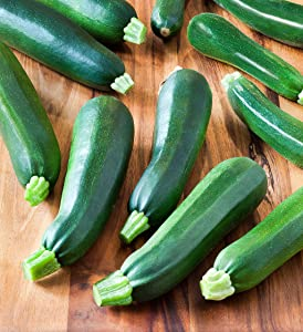 Squash, Zucchini Black Beauty Organic   50+ Seeds   Non-GMO, Heirloom Seeds, Grow Your Own Food   Vegetable Seeds for Planting