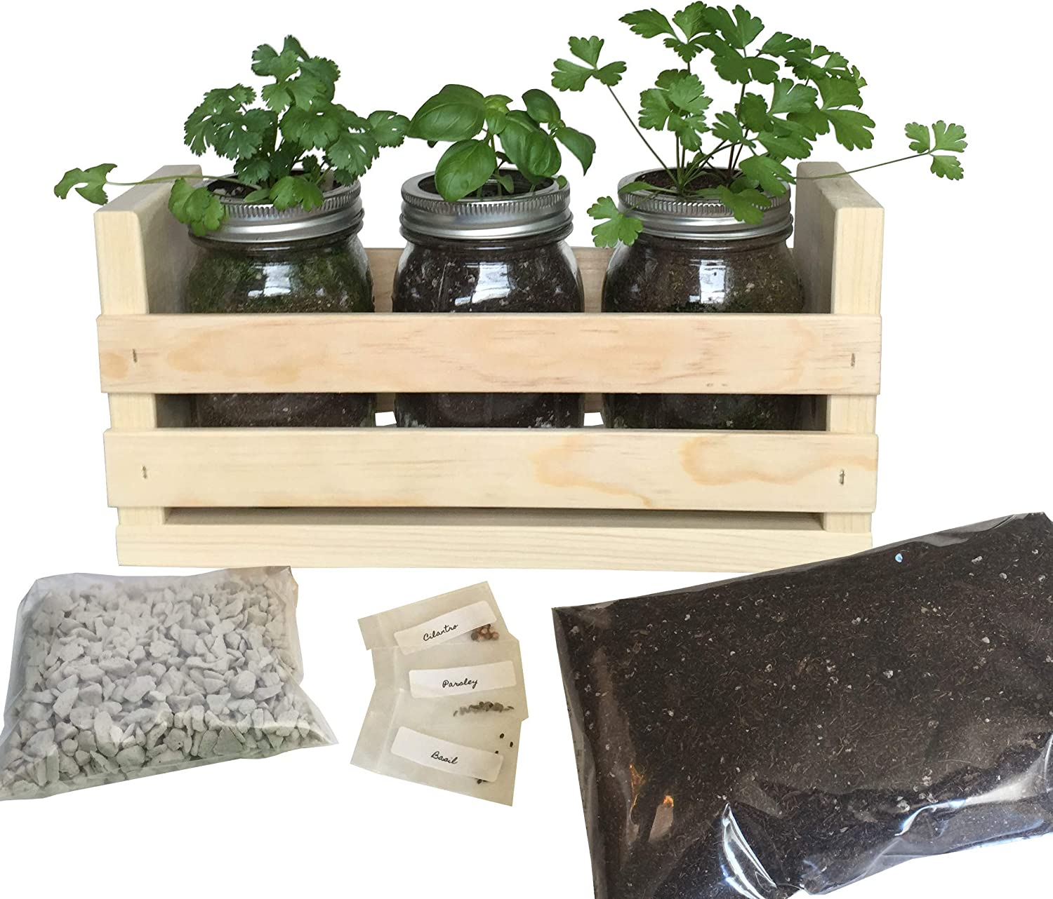Indoor Herb Garden Kit -Great for Growing an Indoor Herb Garden, Includes Everything You Need to Grow a Herb Garden (Cilantro,Basil,Parsley) in a Simple Container