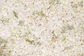 Amazon Floral Wall Photography Backdrops Beautiful White