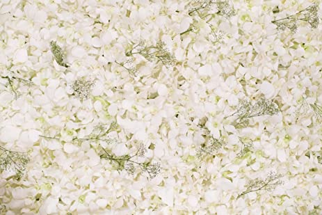 Amazon floral wall photography backdrops beautiful white floral wall photography backdrops beautiful white flowers background for wedding scene photo booth studio props picture mightylinksfo