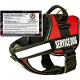 barkOutfitters Real Service Dog Vest Harness + 50 FREE ADA Info Cards Kit