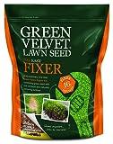 Green Velvet 1Kg Lawn Seed The Easy Fixer