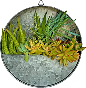 Ivy Echo Round Galvanized Metal Hanging Wall Planter - Farmhouse Style Hanging Planter for Indoor Plants, Galvanized Planter Wall Decor for Herbs, Faux Succulents, Air Plants, Faux Plants Planter Box