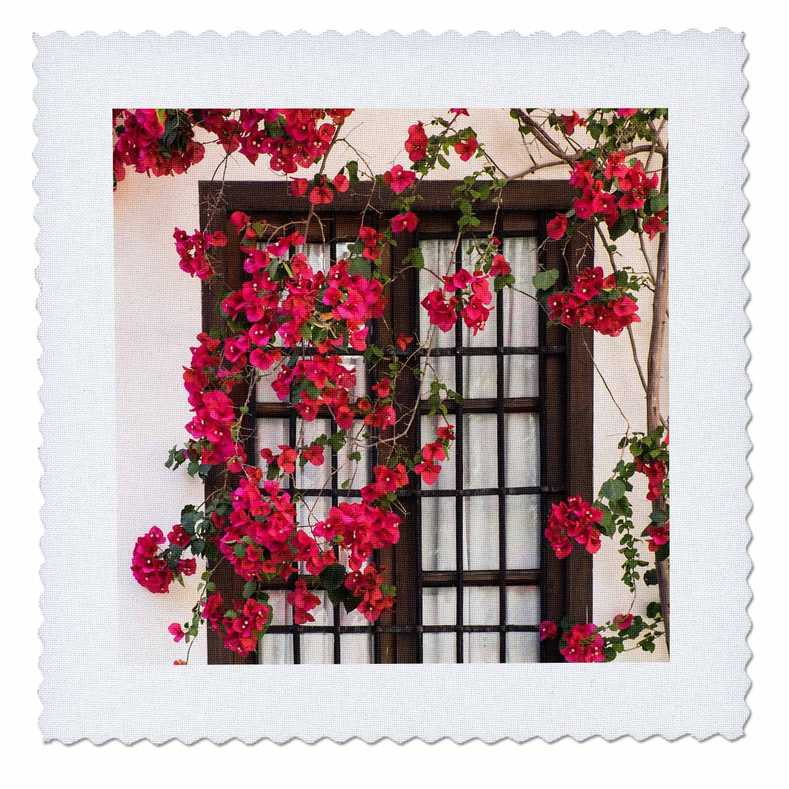 3dRose Danita Delimont - Flowers - Spain, Andalusia. Cordoba. Red bougainvillea and house window. - 12x12 inch quilt square (qs_277893_4)