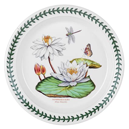 Portmeirion Exotic Botanic Garden Salad Plate Set with 6 Assorted Motifs  sc 1 st  Amazon.com & Amazon.com | Portmeirion Exotic Botanic Garden Salad Plate Set with ...