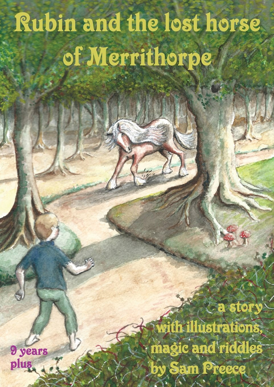 Rubin and the Lost Horse of Merrithorpe: A Story with Illustrations, Magic and Riddles PDF Text fb2 book