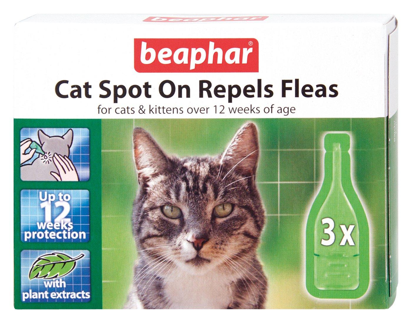 Beaphar gato Spot-on 12 Semanas protección (Pack de 6 ...