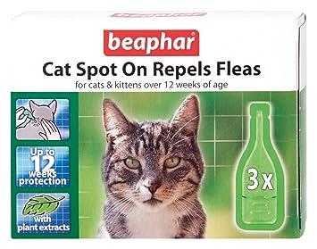 Beaphar gato Spot-on 12 Semanas protección (Pack de 6): Amazon.es: Productos para mascotas
