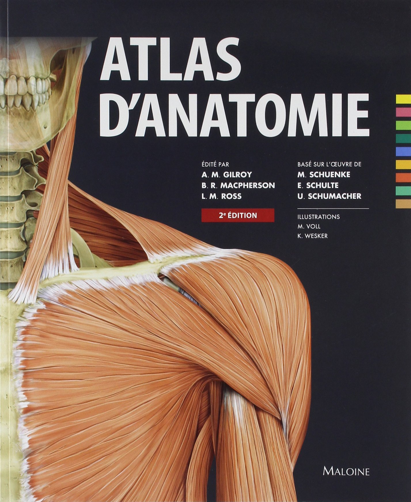 Atlas D\'anatomie: Amazon.co.uk: Anne M. Gilroy: 9782224033514: Books
