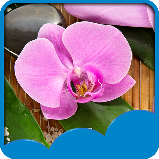 (Orchid Live Wallpapers)