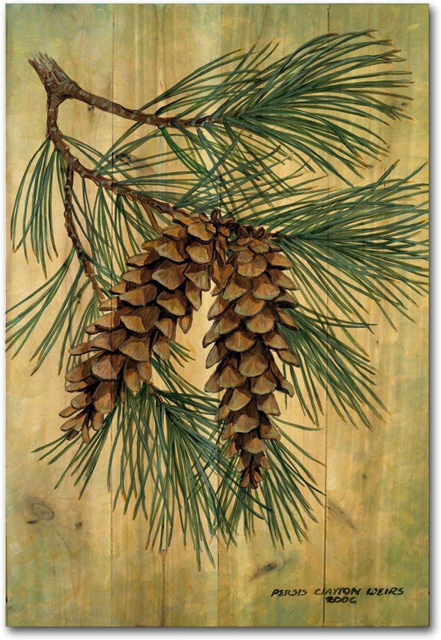 "WGI-GALLERY WA-PC-812 Pine Cone Wooden Wall Art, 16""X24"" OR 24""x36"""