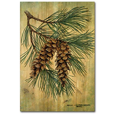 Amazon.com : WGI-GALLERY 812 Pine Cone Wooden Wall Art : Garden ...