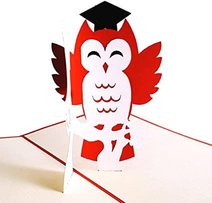 Amazon igifts and cards graduation owl 3d pop up greeting card igifts and cards graduation owl 3d pop up greeting card success hard work m4hsunfo