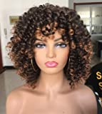 Annivia Short Curly Wig for Black Women with Bangs Big Bouncy Fluffy Kinky Curly Wig Heat Resist Soft Synthetic 2Tone Ombre Darkest Brown Short Curly Afro Wig