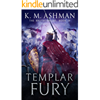 Templar Fury: The Siege of Acre (The Brotherhood Book 4)