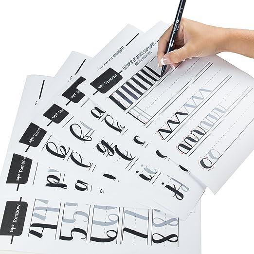 Amazon.com: Tombow Advanced Lettering Set Marker (56191): Office ...
