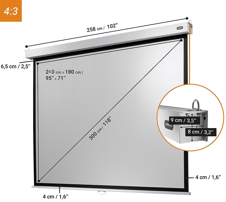 Gain 1,2 300 x 169 cm celexon manuell ausziehbare Rollo-Beamer-Leinwand Professional Plus Full-HD und 4K 16:9