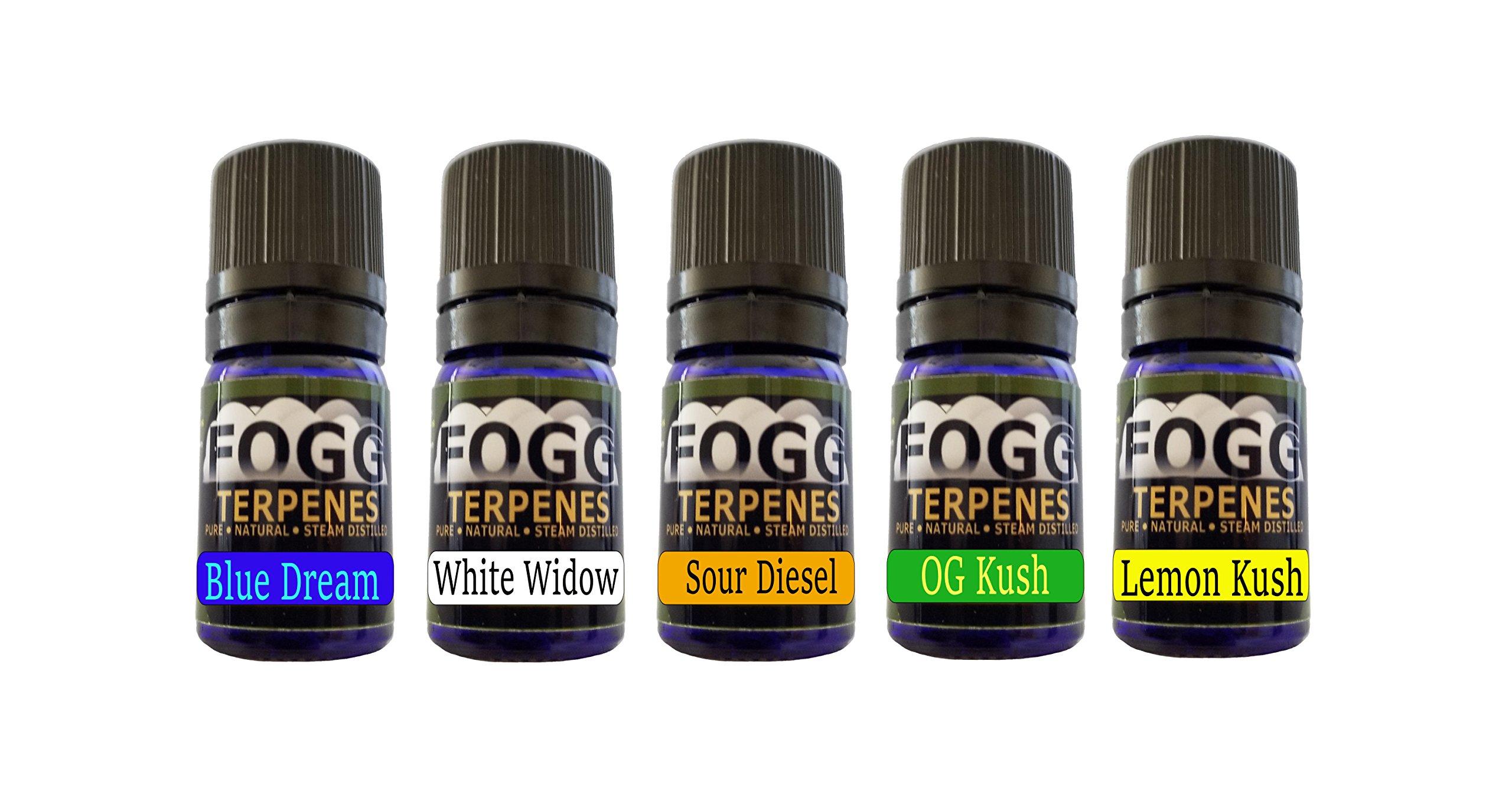 FOGG Terpenes - Bestsellers Collection (5 ml)