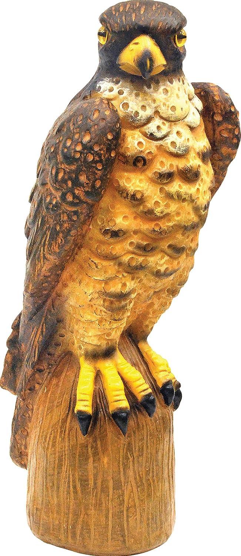 Amazon.com : Garden Defense Owl Decoy (Natural Bird Deterrent) : Home Pest  Repellents : Garden U0026 Outdoor